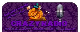 CrazyRadio v 1.2